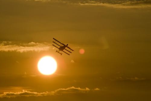 Fokker DR3